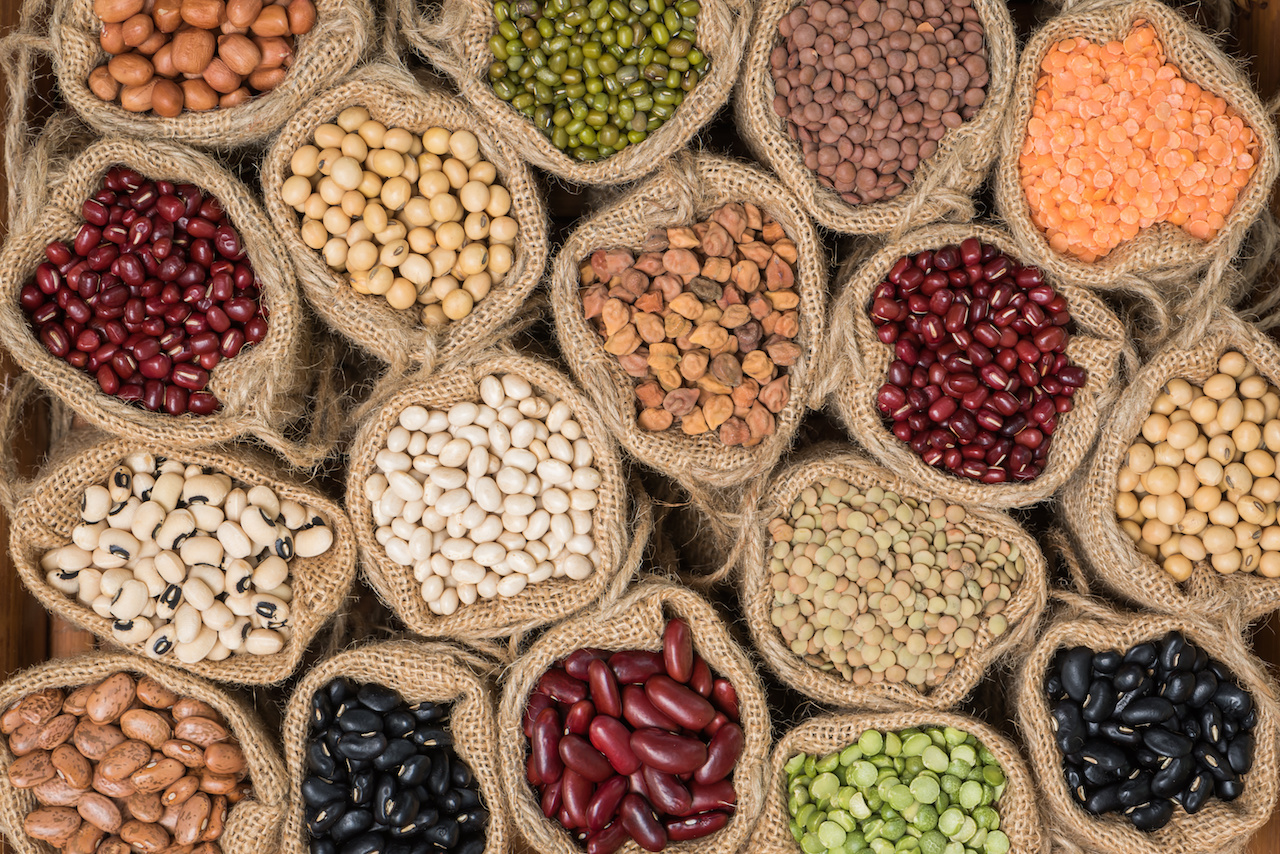 Beans & Legumes as Vegetarian Protein Source